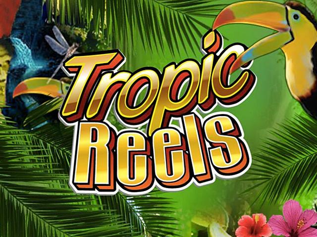 В игровой автомат Tropic Reels играть бесплатно